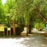 Camping Chopera de Coto Ríos
