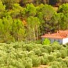 Alojamiento Turísticos El Pantano de Cazorla