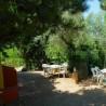 Alojamientos Rincón del Descanso